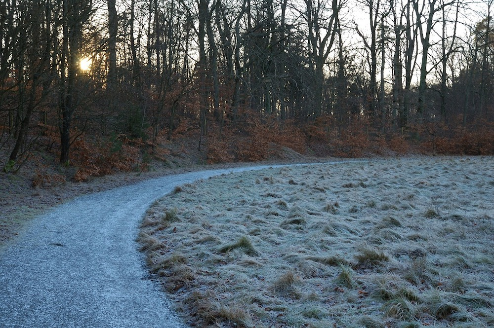 frozen morning ground